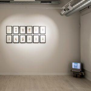Galería. Sala de exposiciones. La U mutante